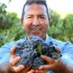 Paolo Leo økologisk vin druer