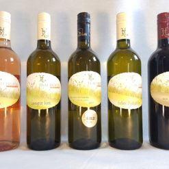 Nyhedssmagskasse Nyhedskasse sps wine østrig Rødvin, rosé, hvidvin