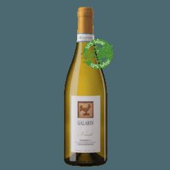 Galarin Chardonnay Piemonte Økologisk hvidvin øko