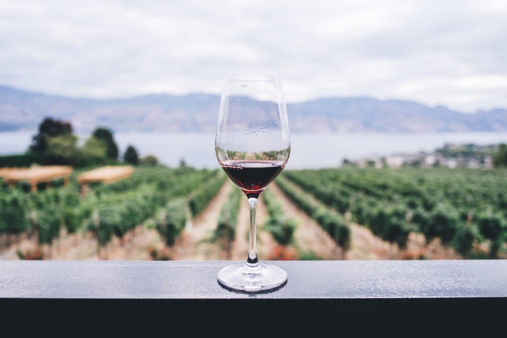 SPS Wine din økologiske vinhandel, De bedste vine til de bedste priser, Økologiske og biodynamisk rødvin, hvidvin, Rosé, mousserende og tilbud. Photo by Kym Ellis on Unsplash